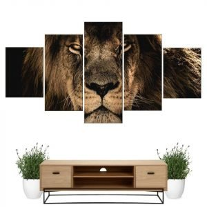 Lion Face framed Painting