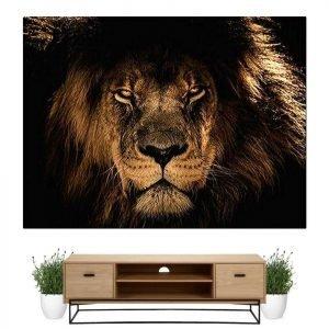 Lion Kingdom Painting