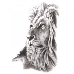 Dreamer Lion Temporary Tattoo