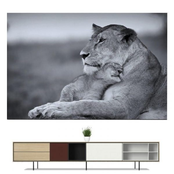 Lioness and Cub Wall Art