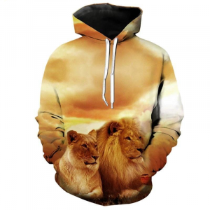Women's Lions Hoodie