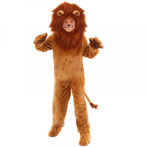 Child Lion Costume Thick Hair
