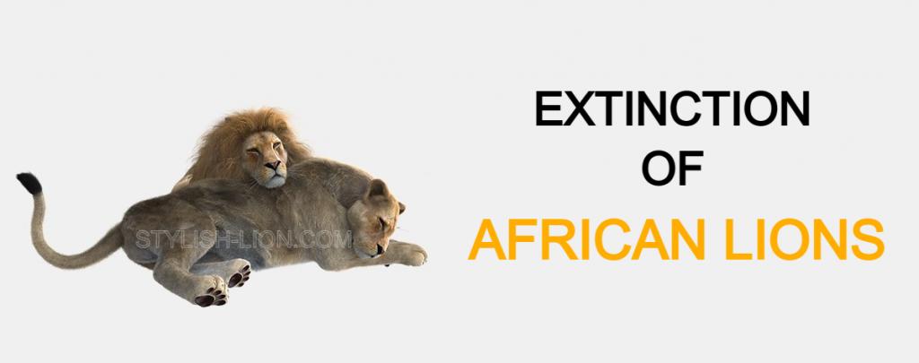 extinction of lions